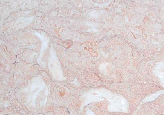 đá marble hồng sò